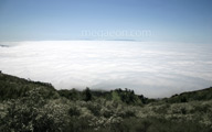mountain view above the clouds